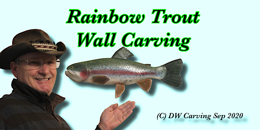 Large wall display rainbow trout